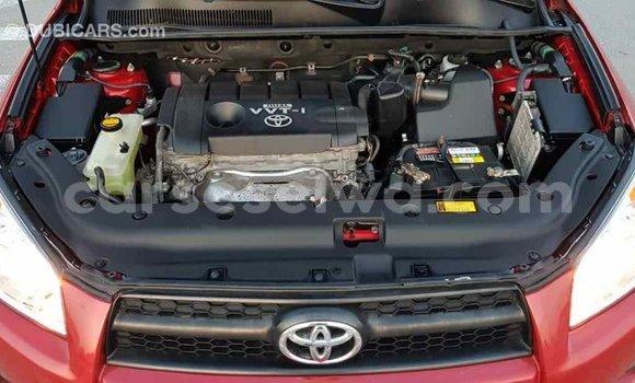 Buy Import Toyota RAV4 Red Car in Import - Dubai in East Mahé