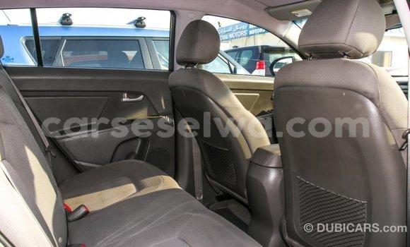 Buy Import Kia Sportage Brown Car in Import - Dubai in East Mahé