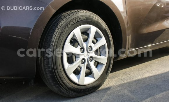 Buy Import Kia Rio Brown Car in Import - Dubai in East Mahé