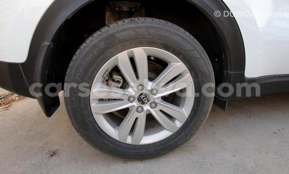 Buy Import Kia Sportage White Car in Import - Dubai in East Mahé