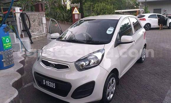 Buy Used Kia Picanto White Car in Beau Vallon in North Mahé