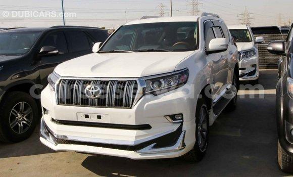 Buy Import Toyota Prado White Car in Import - Dubai in East Mahé