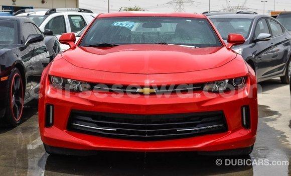 Acheter Importé Voiture Chevrolet Camaro Rouge à Import - Dubai, East Mahé