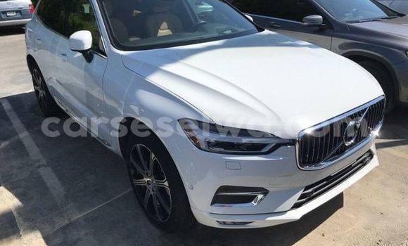 Acheter Occasion Voiture Volvo XC90 Blanc à Port Glaud, West Mahé