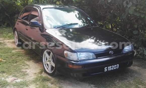 Buy Used Toyota Corolla Black Car in Beau Vallon in North Mahé