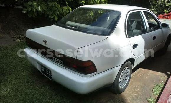 Buy Used Toyota Corolla White Car in Beau Vallon in North Mahé