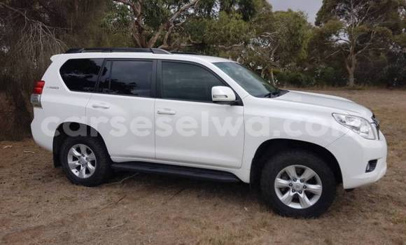 Buy Used Toyota Land Cruiser Prado White Car in Anse Royale in South Mahé