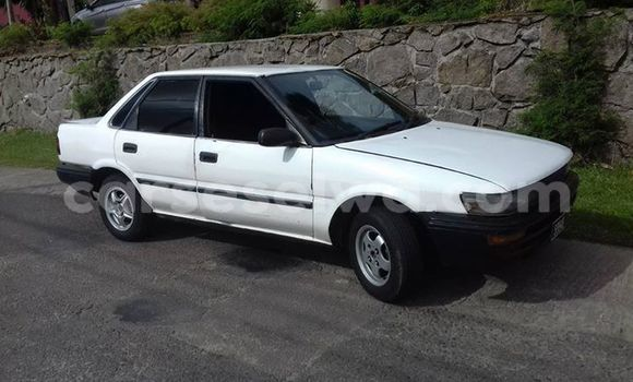 Buy Used Toyota Sprinter White Car in Baie Lazare in South Mahé