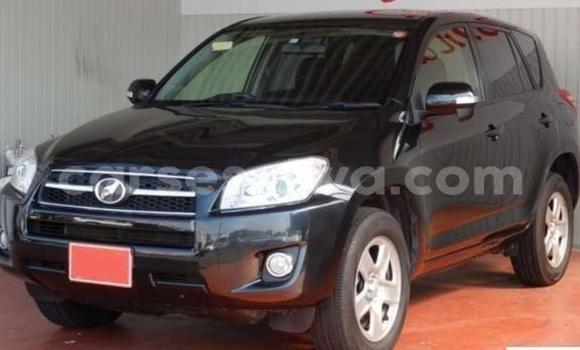 Buy Used Toyota RAV4 Black Car in Mahe in Victoria