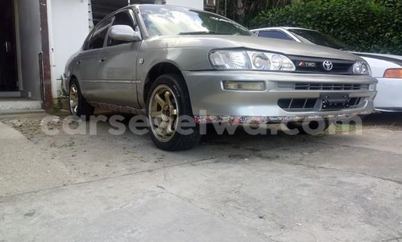 Buy Imported Toyota Corolla Silver Car in Beau Vallon in North Mahé