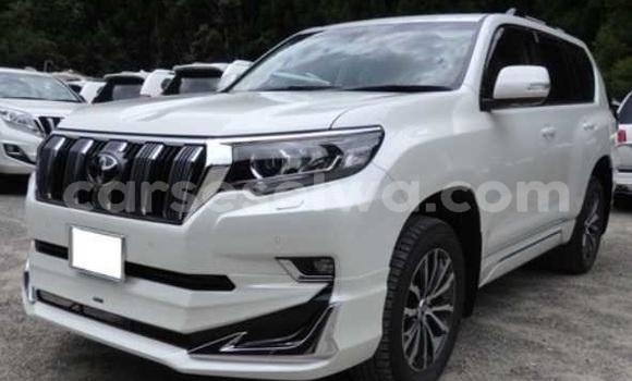 Buy New Toyota Land Cruiser Prado White Car in Anse Aux Pins in East Mahé